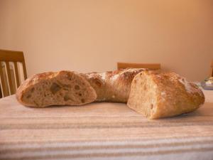 trigo y espelta